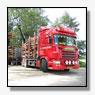 Ten Bulte Rondhout kiest Scania voor bomentransport