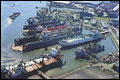 Ploumen: Rotterdamse haven cruciaal voor aantrekken buitenlandse investeerders