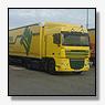 Willem Rompen Transport net failliet: maar Litouwse chauffeurs rijden door  in nieuwe trucks met Cypriotisch kenteken  [+ exclusieve foto's]