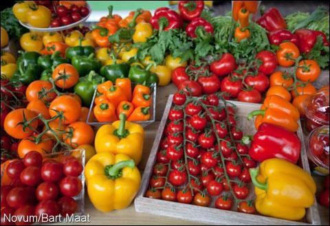 Groente en fruit veilingen in nederland