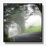 Spitsstrook A50 dicht door mist